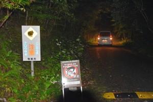 ナイトツアーの増加で野生生物への影響が懸念される三太郎峠=3月、奄美市住用町