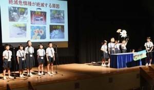 自然保護に関する学習成果を発表する児童ら=7日、徳之島町亀津