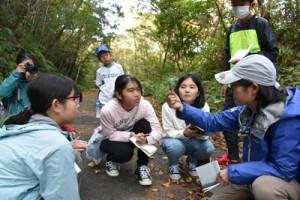 野生生物の調査を体験した児童生徒ら=15日、大和村