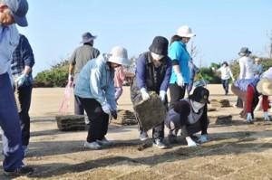 再整備中のフローラルパークで、芝張りのボランティアを行う地域住民ら=24日、知名町知名