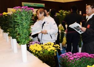 出品された切り花を鑑賞する関係者=30日、鹿児島市