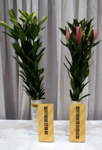 県知事賞に選ばれた牧野宏秋さんのテッポウユリと、県議会議長賞となった加代子さんのオリエンタルユリ(左から)=30日、鹿児島市