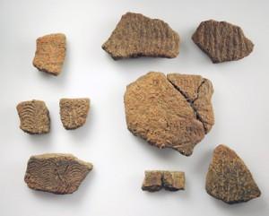 調査で出土した土器片(提供写真)