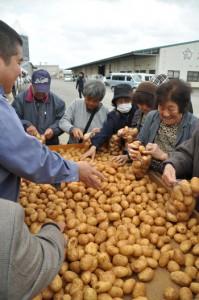 「詰め放題100円」などのイベントもあり、買い物客でにぎわった「じゃがいも祭り」=8日、和泊町