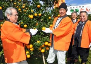 たわわに実ったタンカンにはさみを入れ収穫シーズンを祝う関係者=1日、大和村大金久