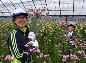 農業ボランティアで切り花の収穫を体験した大学生の石澤さん(左)、廣木さん=25日、奄美市笠利町