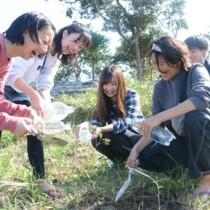タイワンヤマツツジの苗木を植える大学生=8日、宮古崎