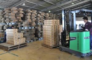 花き製品の出荷作業が行われている沖永良部花き専門農協の作業場