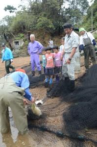 仕掛けた網を引き、かかったハリセンボンやエイに驚く参加者たち=1日、宇検村芦検