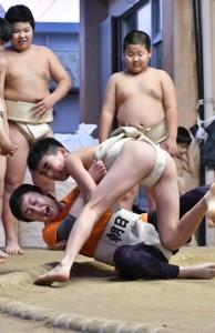 熱戦を繰り広げた朝日相撲スポーツ少年団の親子相撲=2月29日、奄美市名瀬