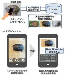 希少種判別アプリ運用イメージ(県提供)
