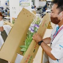 沖永良部島産の切り花詰め合わせを受け取る購入者=14日、和泊町