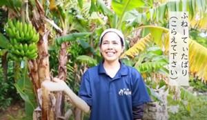 来島自粛を呼び掛けるメッセージ動画「ヨロン島への来島はふねーてぃだばーり♪」(提供写真)
