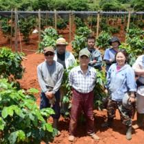 コーヒー農園を拡張した東さん(前列右から2人目)ら=4日、和泊町