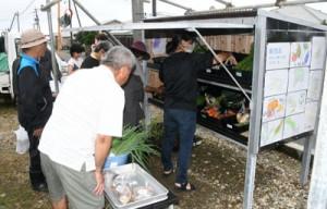 伊仙町下検福集落にオープンした無人販売所「四季菜」=7日、同町検福