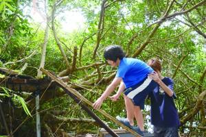 自然体験を楽しむ児童ら=26日、与論島