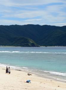 10年連続で「AA」評価を受けた奄美市の大浜海浜公園=27日、同市名瀬