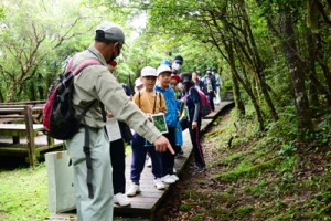 遊歩道脇の植物を観察する児童ら=13日、湯湾岳