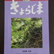 奄美の自然を考える会の会報「きょらじま」第26号
