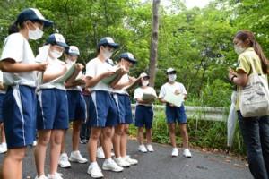 アマミノクロウサギのフンを発見し、記録を取る生徒たち=15日、大和村