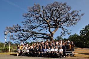 枝ぶりが見事な千年松。伐採を前に開かれた町内会主催の感謝祭=18年5月13日、同市名瀬朝仁新町