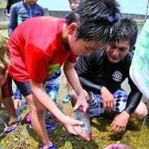 網に掛かった魚を手に取る児童=2日、大和村今里