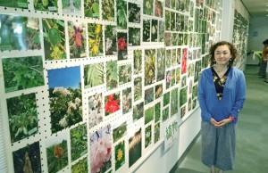 永田さんが撮影した写真約560点が並んだ写真展=16日、徳之島町文化会館