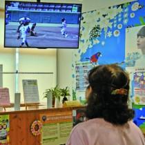 テレビ中継の映像に見入る住民=12日、瀬戸内町