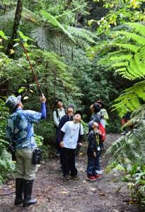 地元の子どもたちに自然の魅力を伝える認定ガイド=2019年8月、奄美大島