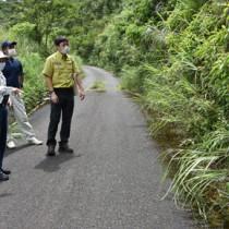 希少な植物の盗掘現場を確認するパトロール員ら=8日、奄美大島