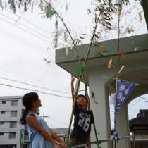 手作りのささ飾りや短冊を結び付ける利用者ら=25日、龍郷町浦