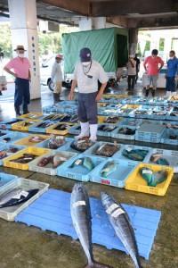 エラブチなどが並んだ与論町漁協の競り市=22日、同町