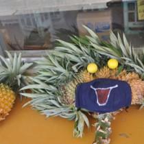 店頭に飾られているパイナップル=与論町