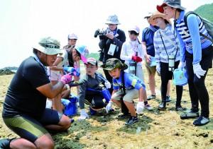 潮だまりの生き物を観察する参加者=2日、奄美市笠利町の用海岸