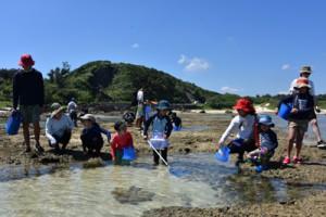 サンゴ礁にすむ生き物を観察した参加者=18日、奄美市笠利町