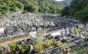 約4000の墓地が広がる永田墓地=11日、奄美市名瀬