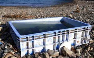東日本大震災時の津波で流され、海岸に流れ着いたとみられる石巻魚市場の備品=8日、瀬戸内町阿木名