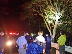 樹上に仕掛けられたトラップ(上)を確認する関係者ら=6日、瀬戸内町加計呂麻島(環境省奄美群島国立公園管理事務所提供)