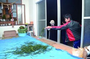 無病息災を祈り、「ヒヨヒヨ~」と言いながらソテツの葉をちぎって投げる「ヒヨヒヨ」=23日、瀬戸内町清水の厳島神社
