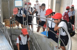地下ダムの取水施設を見学する児童ら=20日、知名町