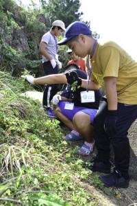 外来種について学び、駆除作業に取り組んだ児童たち=17日、瀬戸内町古仁屋