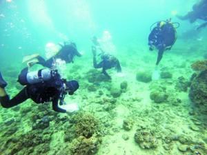 サンゴ礁の調査方法を学んだ海洋実習(BLUE SchoolDesign提供)