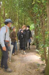国直集落のフクギ並木を散策する体験ツアーの一行=29日、大和村国直集落
