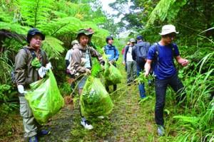 外来種セイタカアワダチソウの駆除作業も行ったウオーキングイベント=23日、奄美中央林道