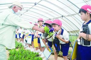 花の香りをかいで驚く大勝小学校の児童と再田純信さん(写真左)=20日、龍郷町浦の再田農園