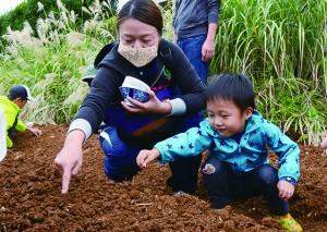 野菜の種を植える参加者=21日、和泊町