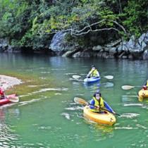 マングローブ原生林でカヌーを体験する旅行業関係者ら=1日、奄美市住用町