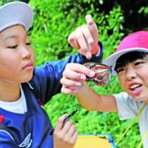 マーキングしたアサギマダラを観察する喜界小の児童ら=14日、滝川林道