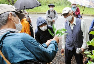 地元の植物について学んだ植物教室=8日、知名町の大山