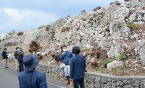 与論城跡の石垣を見学する説明会参加者ら=13日、与論町の城集落